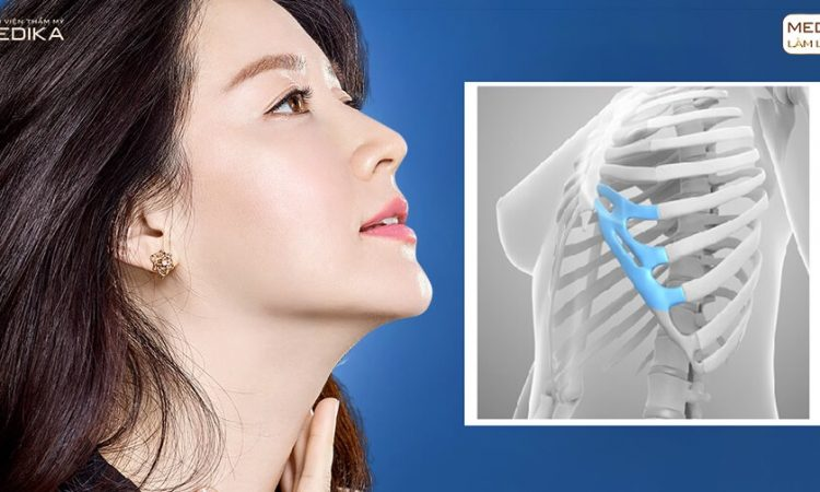 Nên ăn kiêng gì sau khi nâng mũi sụn sườn? - Nangmuislinedep.com.vn